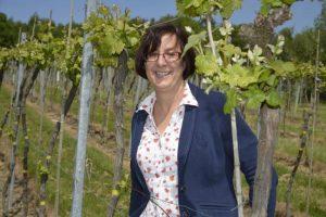 english sparkling wine, bolney estates, sam lintner, winemaker